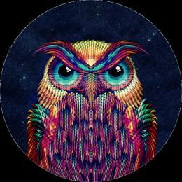 PopSocket Owl